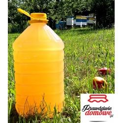 Ocet jabłkowy 5l, prawdziwie domowy (Plastikowa butelka)